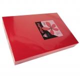 250 Blatt Kopierkarton 160 g/m² A3 korallenrot