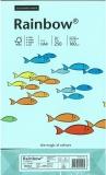 250 Blatt Kopierkarton 160 g/m² A4 hellblau