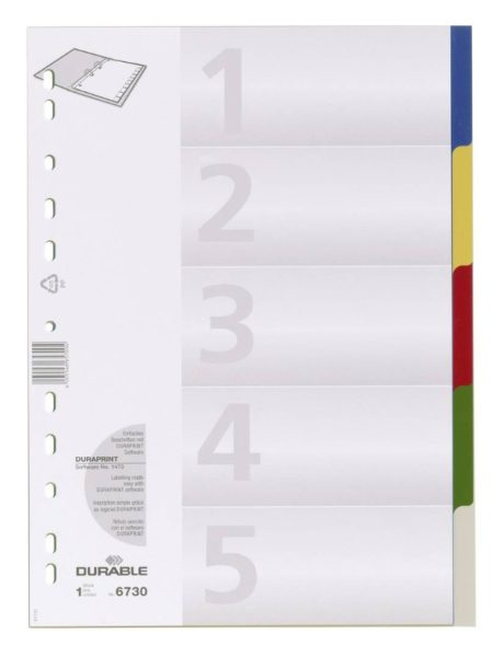DURABLE Kunststoff-Register, A4, PP, 5-teilig