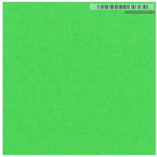 Fotokarton 50 x 70 grasgrün